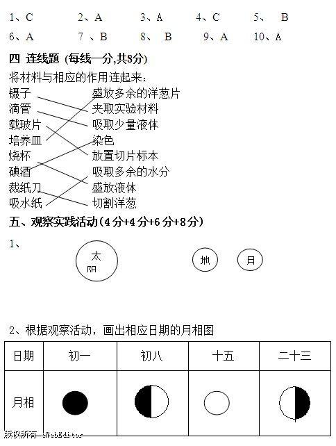 24点连线图解正确答案